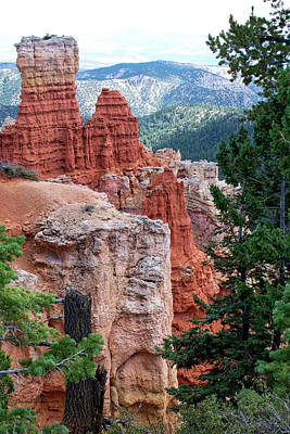 Photograph - Agua Canyon Bryce Canyon Utah Vertical by Thomas Woolworth