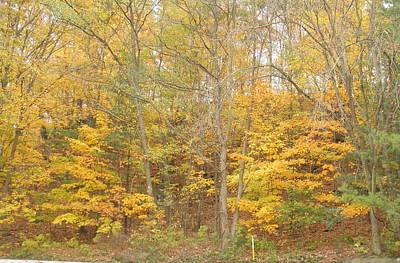 Photograph - Ahh Autumn by Barbara Keith
