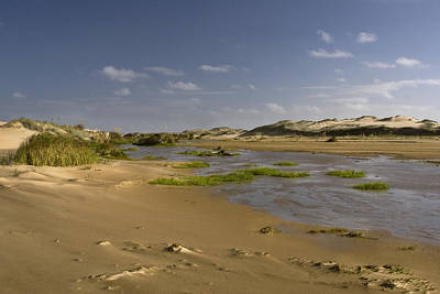 Ahipara Sand Dunes New Zealand Print by Graham Hughes