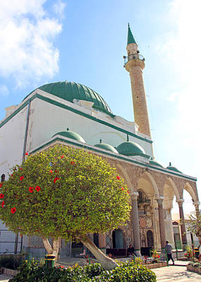 Photograph - Ahmed El-jazzar Mosque by Munir Alawi