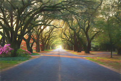 Aiken South Boundary II Art Print