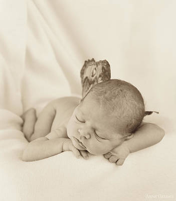 Angel Photograph - Aimee As A Fairy by Anne Geddes