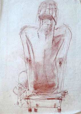 Drawing - Aimee by Phyllis Hanson Lester