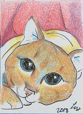 Drawing - Ain't I Cute by Loretta Nash