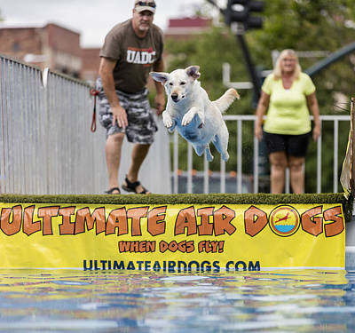 Photograph - Air Dog 4 by Bill Linhares