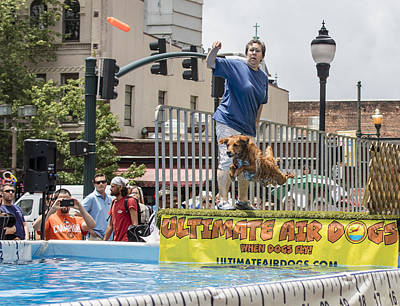 Photograph - Air Dog 6 by Bill Linhares