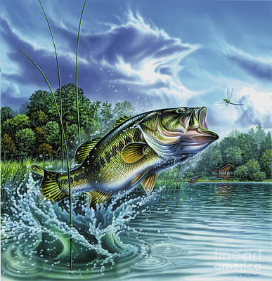 Airborne Bass Art Print by Jon Wright