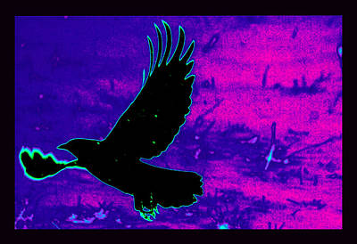 Airborne Art Print