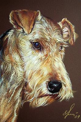 Drawing - Airdale Terrier by Elena Kolotusha