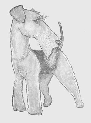 Drawing - Airedale Terrier Distressed by John LaFree