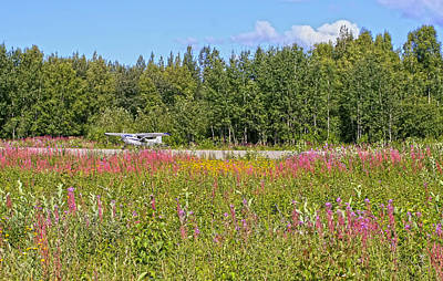 Photograph - Airplane On Flower Landing Strip In Alaska by Waterdancer