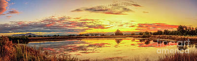 Photograph - Airport Pond by Robert Bales