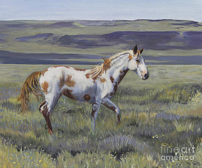 Chestnut Paint Horse Painting - Aiyana The Wild Mustang by Jordan Parker