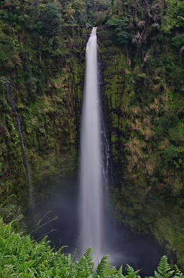 Photograph - Akaka Falls by Don Schwartz