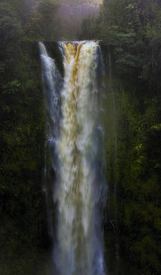 Rain Digital Art - Akaka Falls by Ellen Heaverlo