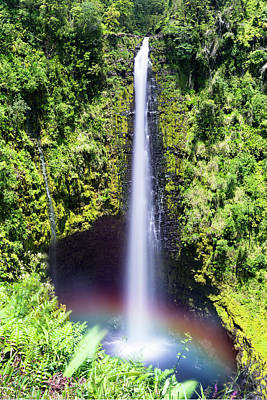 Photograph - Akaka Falls Hawaii by Joe Belanger
