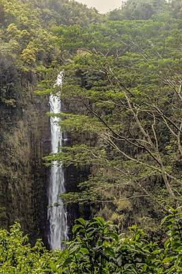 Photograph - Akaka Falls by NaturesPix