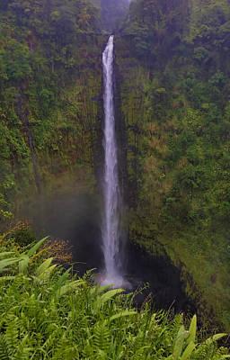 Photograph - Akaka Falls by Pamela Walton