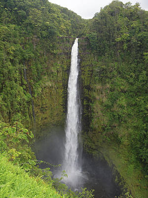 Akaka Falls Art Print by Phil Stone