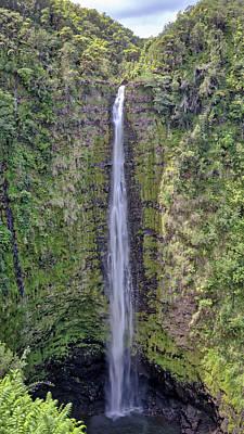 Photograph - Akaka Falls by Susan Rissi Tregoning