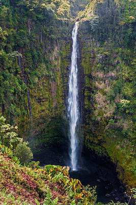 Photograph - Akaka Falls - The Big Island Hawaii by Brian Harig