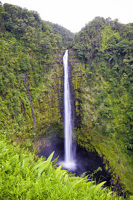 Photograph - 'akaka Falls by Windy Corduroy