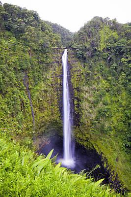 Photograph - 'akaka Falls by Windy Corduroy