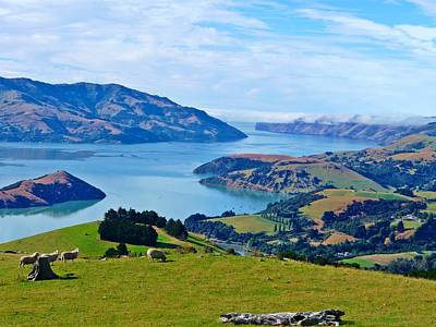 Akaroa View Art Print