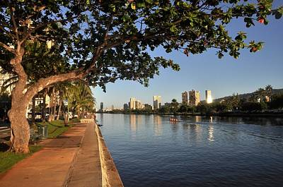 Photograph - Ala Wai Trail by Andrew Dinh