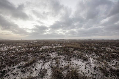 Photograph - Alabama Dunes  by John McGraw