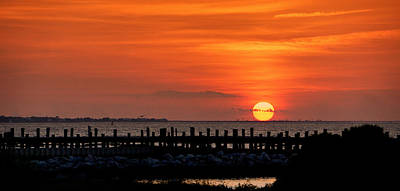 Photograph - Alabama Sunset by Sandy Keeton