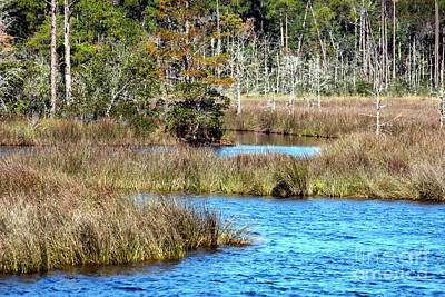 Waterscapes Photograph - Alabama Waterway by Carol Groenen
