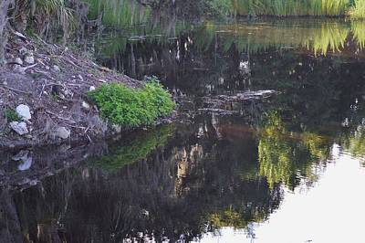 Photograph - Alachua Sink Reflections by Warren Thompson