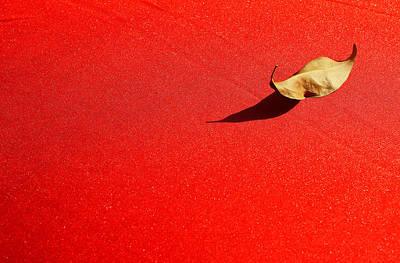 Aladdin Photograph - Aladdins Lamp by Prakash Ghai