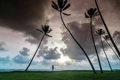 Hand Carved Photograph - Alaia Palms by Sean Davey