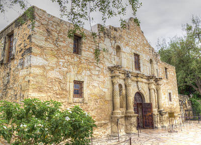 Photograph - Alamo by David Cutts