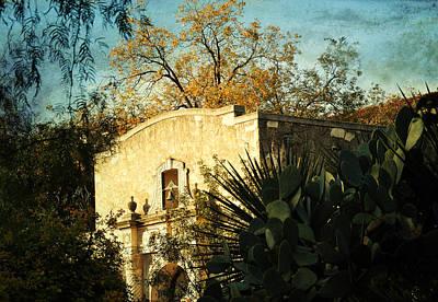 Alamo Mission Art Print by Iris Greenwell