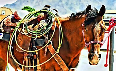 Working Cowboy Photograph - Alamo Star by CJ Anderson