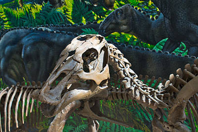 Photograph - Alaska Dinosaurs by Cathy Mahnke