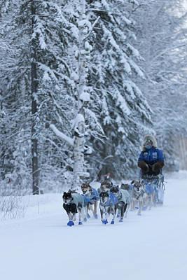 Photograph - Alaska Dog Sled Team by Scott Slone