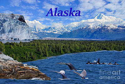 Photograph - Alaska by Jennifer White