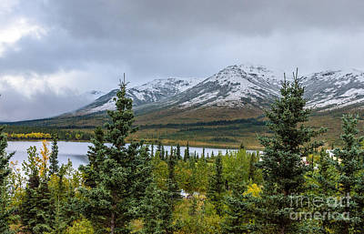 Photograph - Alaska Mountain Range View by Mary Carol Story