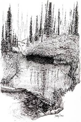 Drawing - Alaska Pond by Betsy Carlson Cross