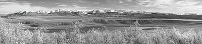 Photograph - Alaska Range Pano Bw by Peter J Sucy