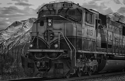 Food And Flowers Still Life Rights Managed Images - Alaska Rail Royalty-Free Image by Eclectic Edge Photography Kevin and Diana Holton