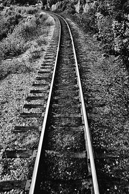 Photograph - Alaska Tracks by Lucian Capellaro