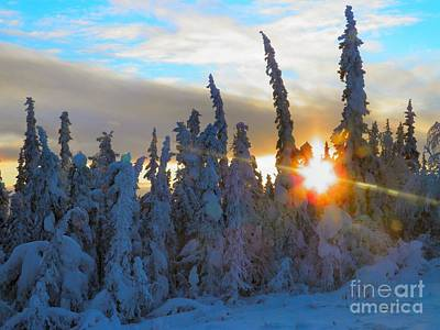 Photograph - Alaska Winter High Noon by Adam Owen