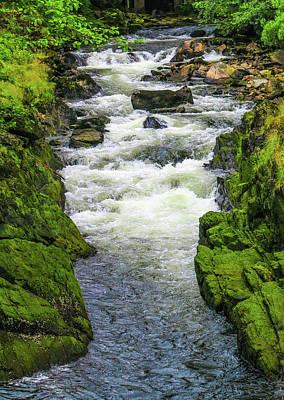Photograph - Alaskan Creek by Jason Brooks