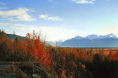 Alaskan Fall Art Print by Brigid Nelson