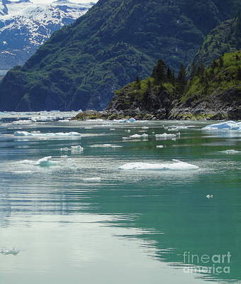 Photograph - Alaskan Fjord Icy Waters by Susan Lafleur